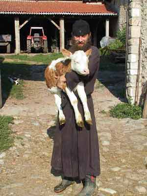 Fr. Daniel with a new calf